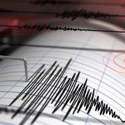Cutremur în România, în urmă cu câteva minute. L-ați simțit?