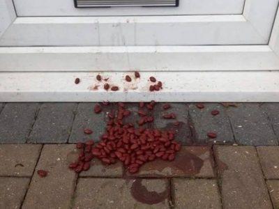 """O femeie a găsit resturi de mâncare aruncate la ușa casei, dar a ignorat """"semnul"""". Un polițist i-a explicat ce poate să însemne"""
