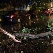 Prăpăd la Suceava! Codul roșu de vijelii a rupt copaci și a smuls acoperișuri. Noi alerte meteo emise pentru întreaga țară